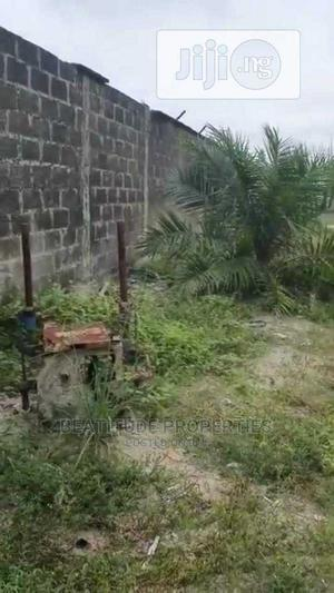 25,000sqmts Land for Sale at Ikate, Close to the Expressway | Land & Plots For Sale for sale in Lekki, Ikate