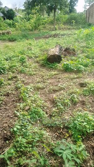 Half Plot of Land for Sale in Akure, Ondo State   Land & Plots For Sale for sale in Ondo State, Akure