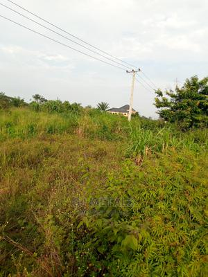 Plots for Sale Along Aba Road. | Land & Plots For Sale for sale in Imo State, Owerri