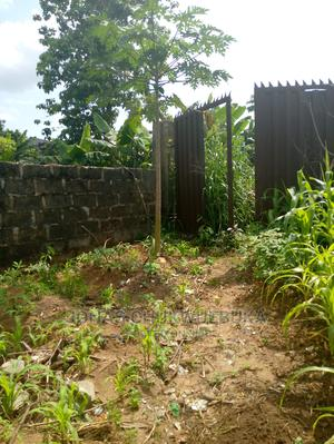 2 Plots of Land Good for Residential Purpose Is Up for Sale. | Commercial Property For Sale for sale in Imo State, Owerri