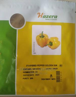 Hybrid Yellow Sun Bell Pepper Seeds and Seedlings | Feeds, Supplements & Seeds for sale in Lagos State, Ojodu