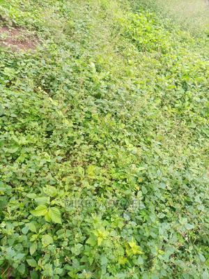 1442sqm at Katampe Main (Residential Plot) | Land & Plots For Sale for sale in Abuja (FCT) State, Katampe