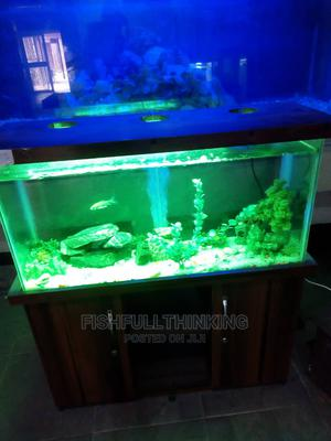 Aquarium and Stand | Fish for sale in Lagos State, Ajah