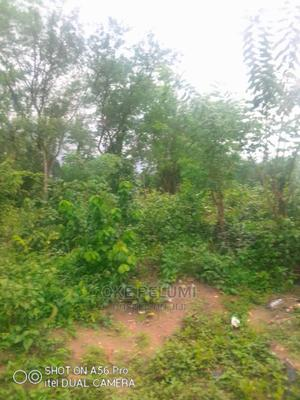 A Plot of Land for Sale   Land & Plots For Sale for sale in Oyo State, Ido