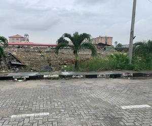 Land For Sale Facing Express In Ikate   Land & Plots For Sale for sale in Lagos State, Lekki
