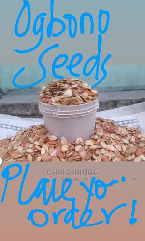 Ogbono Seed for Sale and Delivery | Feeds, Supplements & Seeds for sale in Abuja (FCT) State, Central Business Dis