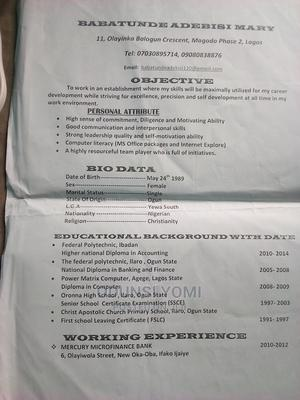 Accounting Finance CV | Accounting & Finance CVs for sale in Lagos State, Gbagada