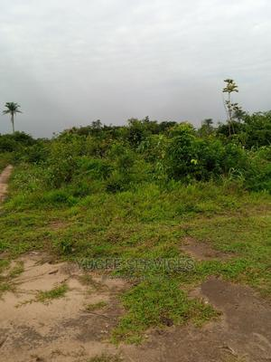 23 Plots for Sale in Owerri   Land & Plots For Sale for sale in Imo State, Owerri