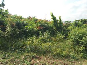 Red Copy Survey and Land Agreement | Land & Plots For Sale for sale in Ibadan, Alakia