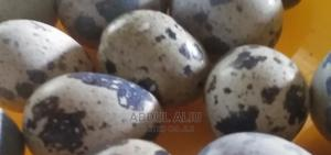 Why You Must Eat Quail Eggs | Livestock & Poultry for sale in Abuja (FCT) State, Jikwoyi
