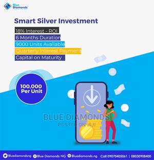 Smart Silver Investment | Tax & Financial Services for sale in Abuja (FCT) State, Gwarinpa
