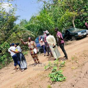 Registered Survey and Deed of Assignment | Land & Plots For Sale for sale in Oyo State, Iseyin