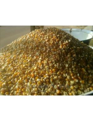 Maize, Corn, Bag of Maize, Plastic, Derica, All Types | Meals & Drinks for sale in Lagos State, Ikeja