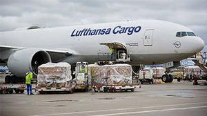 Bulk Shipment From Nigeria to Croatia   Logistics Services for sale in Lagos State, Ikoyi