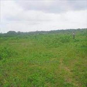 Land for Sale | Land & Plots For Sale for sale in Delta State, Ika South