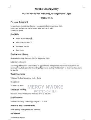 Office Curriculum Vitae | Office CVs for sale in Lagos State, Ikotun/Igando