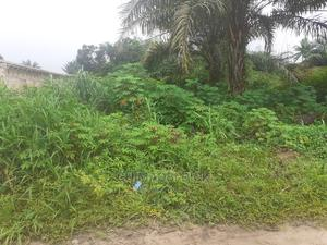 A Plot of Land at Amazu Umunneokpu Osisioma ,Abia State   Land & Plots For Sale for sale in Abia State, Osisioma Ngwa