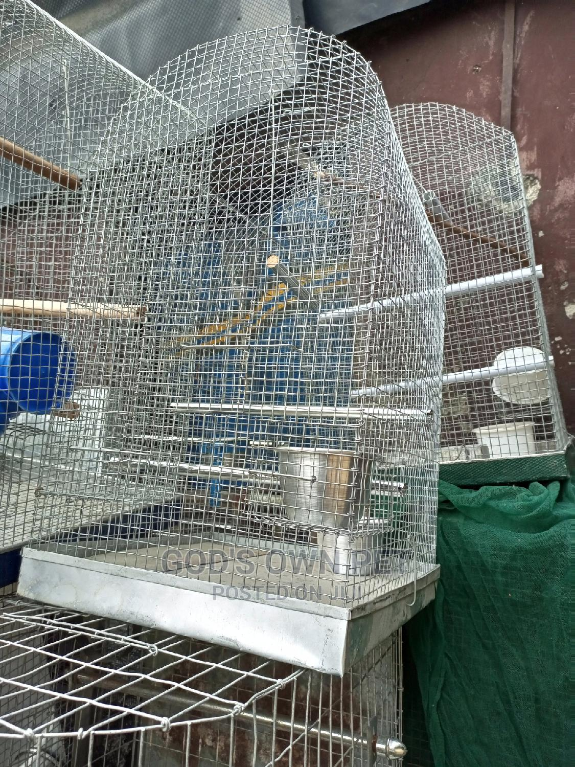 Well Built Local Cage For Your Parrot