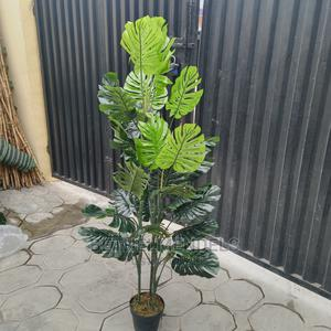 Buy B Q Monstera Artificial Plant | Garden for sale in Lagos State, Ikeja