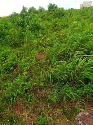 A Plot of Land for Sale , at Behind Kemta Housing Estate | Land & Plots For Sale for sale in Ogun State, Abeokuta South