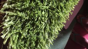 Carpet Grass | Garden for sale in Lagos State, Surulere