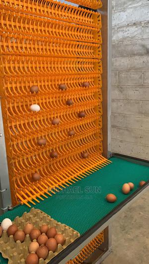 China Poultry Cage | Farm Machinery & Equipment for sale in Ogun State, Odeda