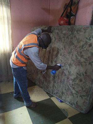 Bed Bugs Fumigation Expert | Cleaning Services for sale in Lagos State, Amuwo-Odofin