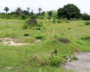 Plots of Land for Sale | Land & Plots For Sale for sale in Anambra State, Nnewi