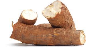 High Yeild Cassava Farming   Feeds, Supplements & Seeds for sale in Ogun State, Ado-Odo/Ota