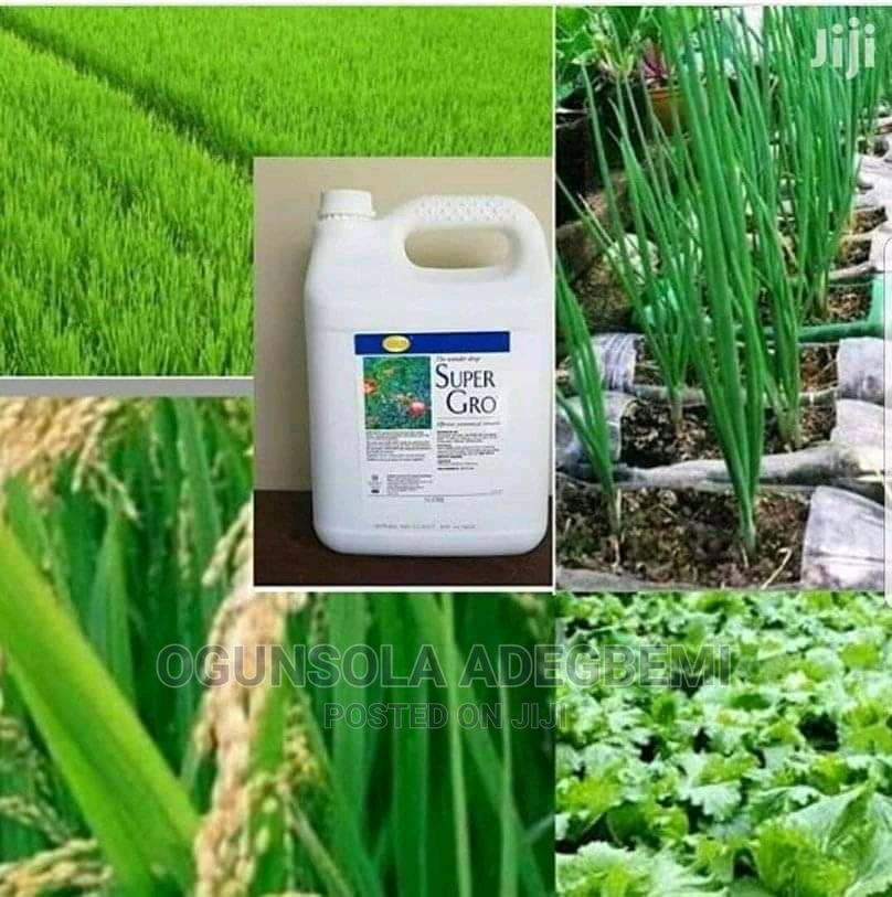 GNLD Super Gro | Feeds, Supplements & Seeds for sale in Central Business Dis, Abuja (FCT) State, Nigeria