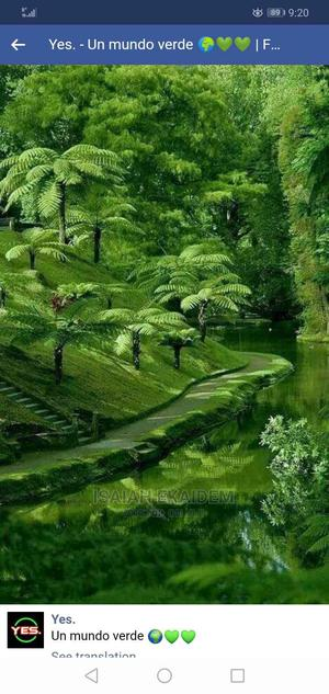 Gardening Services | Landscaping & Gardening Services for sale in Rivers State, Port-Harcourt