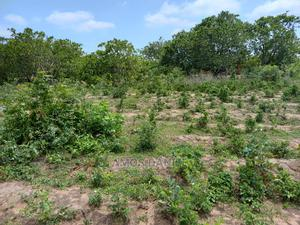 2 Plot of Land | Land & Plots For Sale for sale in Kwara State, Ilorin West