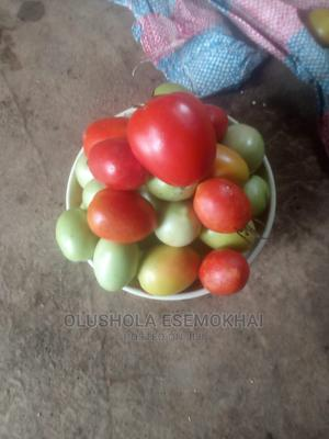 Farm Fresh Groceries   Livestock & Poultry for sale in Lagos State, Ojodu