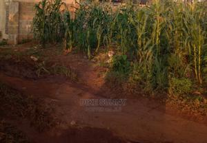 50 By 100 Plot Of Land At Deeper Road For Sale. | Land & Plots For Sale for sale in Edo State, Benin City