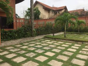 Best in Garden Establishment and Maintenance   Landscaping & Gardening Services for sale in Oyo State, Ibadan