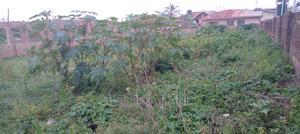 700sqm of Land at Elebu, Off Akala Expressway, Ibadan, Oyo S | Land & Plots For Sale for sale in Ibadan, Akala Express