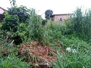 One Acre Of Farmland For Rent At Erunmu Ibadan | Land & Plots for Rent for sale in Oyo State, Egbeda