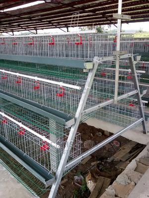 Cages for Birds | Birds for sale in Lagos State, Alimosho