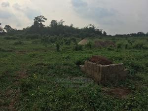 A Plot of Land Forsale at Ilogbo | Land & Plots For Sale for sale in Ogun State, Ado-Odo/Ota