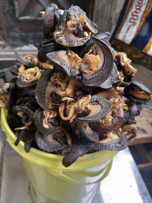 Land Snails | Meals & Drinks for sale in Akwa Ibom State, Uyo