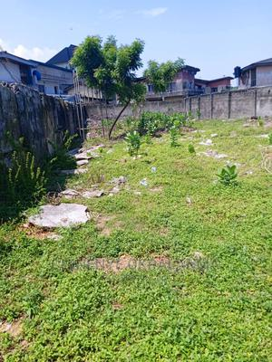 One and Half Plot of Land at Ekololu Street Surulere Lagos | Land & Plots For Sale for sale in Lagos State, Surulere