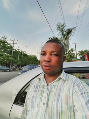 Van Sales Representative   Health & Beauty CVs for sale in Lagos State, Ikorodu