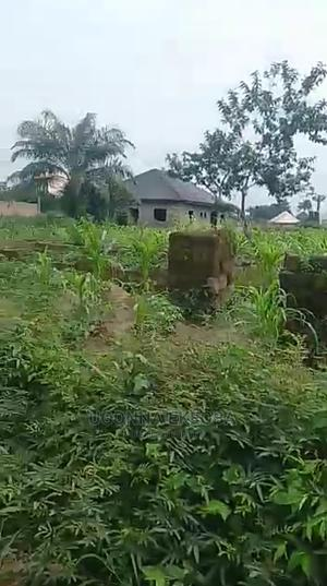 Land for Sale | Land & Plots For Sale for sale in Abia State, Osisioma Ngwa