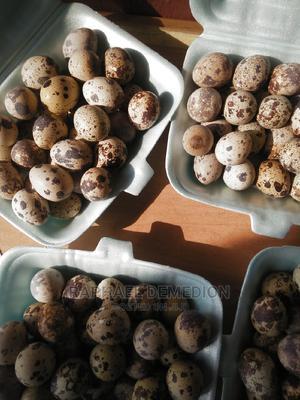 Fresh Organic Quail Egg | Meals & Drinks for sale in Akwa Ibom State, Uyo