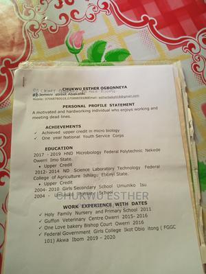 Sales Telemarketing CV | Sales & Telemarketing CVs for sale in Enugu State, Udi