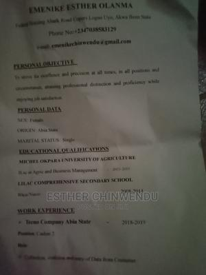 Accounting Finance CV   Accounting & Finance CVs for sale in Abia State, Bende
