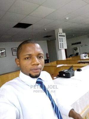 Customer Care Officer/Teller | Customer Service CVs for sale in Lagos State, Surulere
