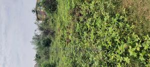 Land at Ido Ibadan Oyo State for Sale | Land & Plots for Rent for sale in Oyo State, Ido