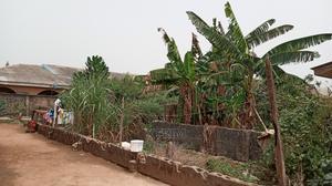 Half Plot of Land | Land & Plots For Sale for sale in Ogun State, Ado-Odo/Ota