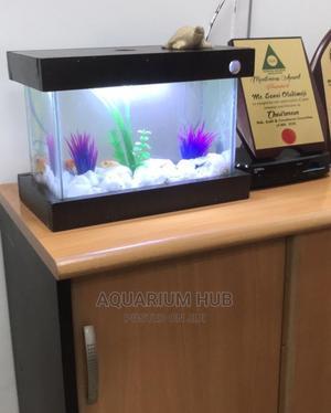 Nano Aquarium | Fish for sale in Lagos State, Ikoyi